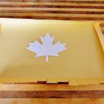 Осенние поделки из бумаги и картона для начальной школы с шаблонами
